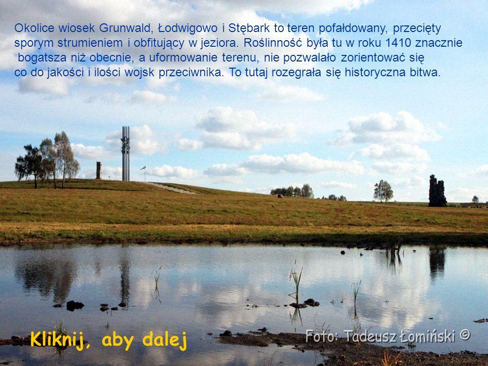 Okolice wiosek Grunwald, Łodwigowo i Stębark to teren pofałdowany, przecięty sporym strumieniem i obfitujący w jeziora.