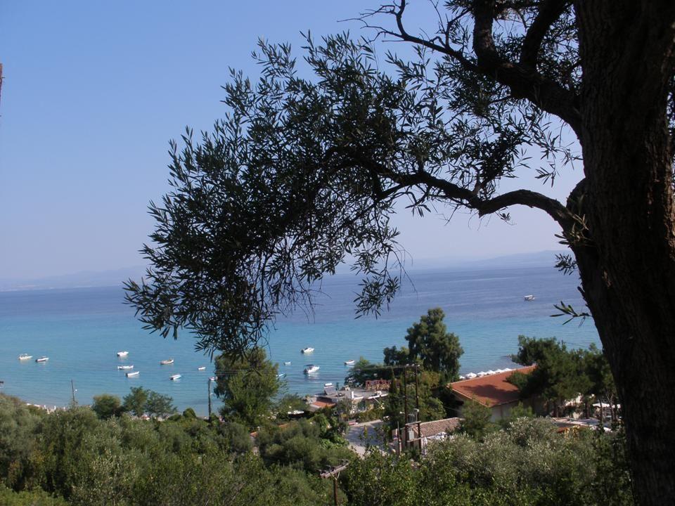 Widok na miasteczko z plaży