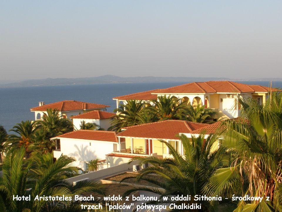 Hotel Aristoteles Beach leżący na obrzeżach Afitos, 2km od centrum