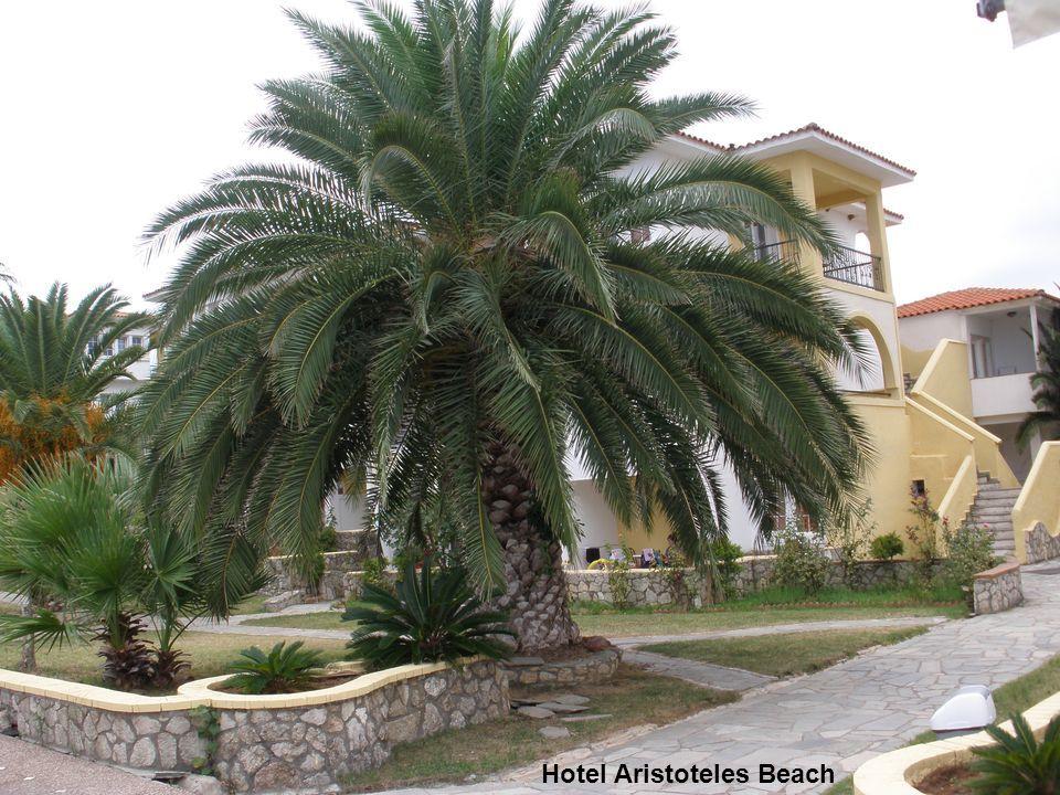 Hotel Aristoteles Beach – widok z balkonu, w oddali Sithonia - środkowy z trzech palców półwyspu Chalkidiki