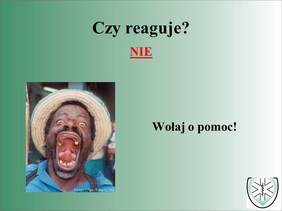 więcej: www.PierwszaPomoc.pl CENTRUM AKTYWNEJ POMOCY RATLOMED