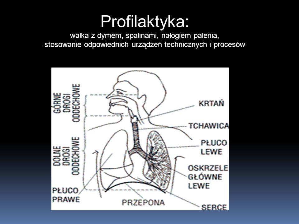 Układ oddechowy (górne i dolne drogi oddechowe) Profilaktyka: walka z dymem, spalinami, nałogiem palenia, stosowanie odpowiednich urządzeń technicznych i procesów