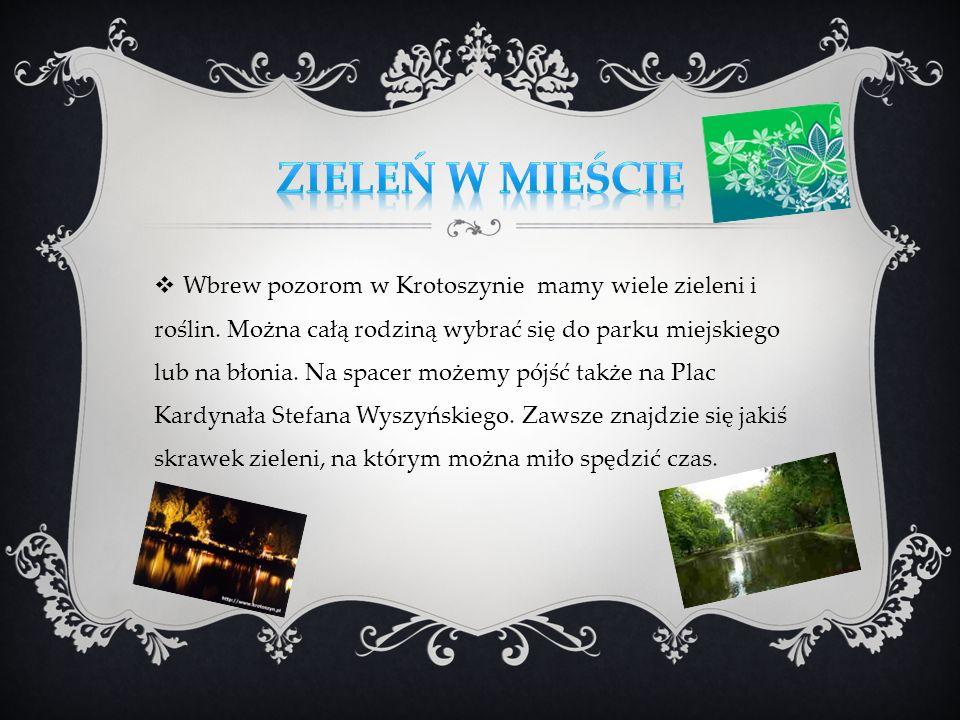 Wbrew pozorom w Krotoszynie mamy wiele zieleni i roślin. Można całą rodziną wybrać się do parku miejskiego lub na błonia. Na spacer możemy pójść także