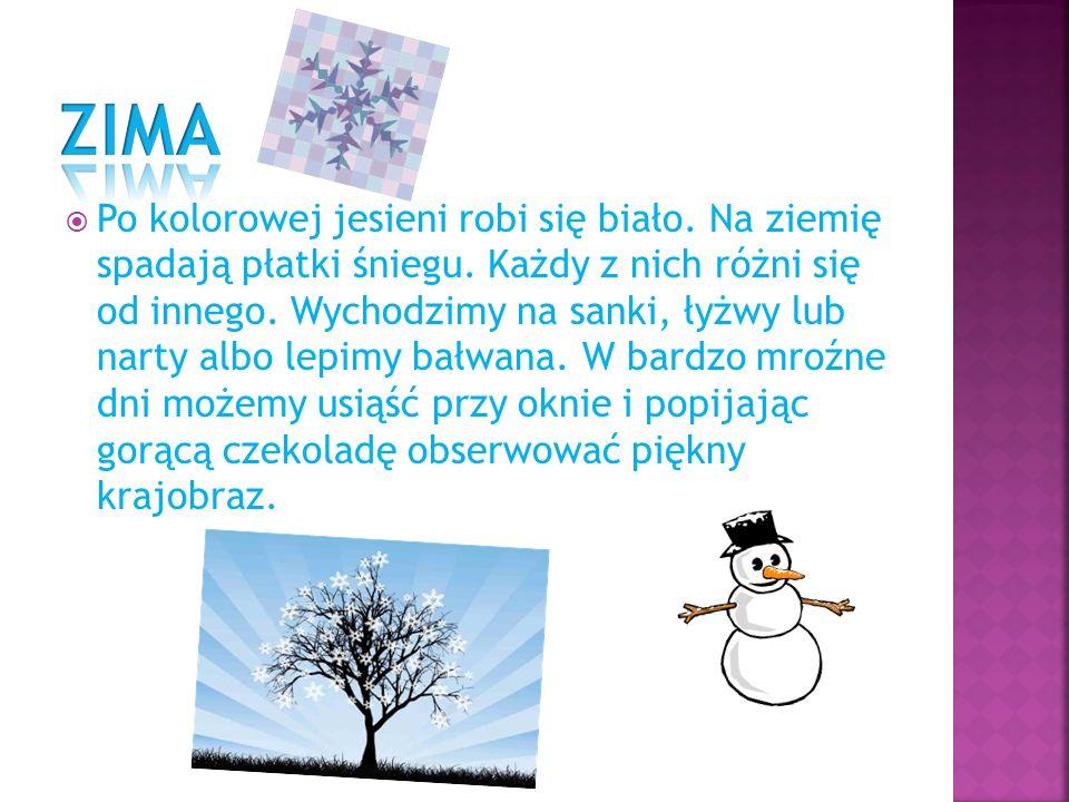 Po kolorowej jesieni robi się biało. Na ziemię spadają płatki śniegu. Każdy z nich różni się od innego. Wychodzimy na sanki, łyżwy lub narty albo lepi