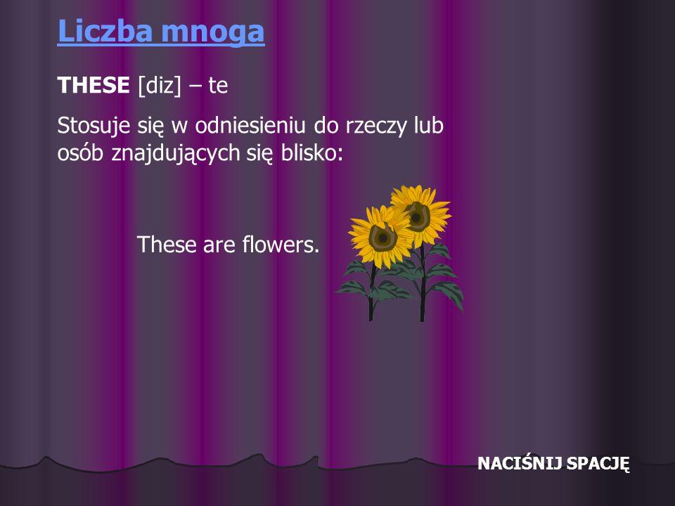 NACIŚNIJ SPACJĘ Liczba mnoga THESE [diz] – te Stosuje się w odniesieniu do rzeczy lub osób znajdujących się blisko: These are flowers.