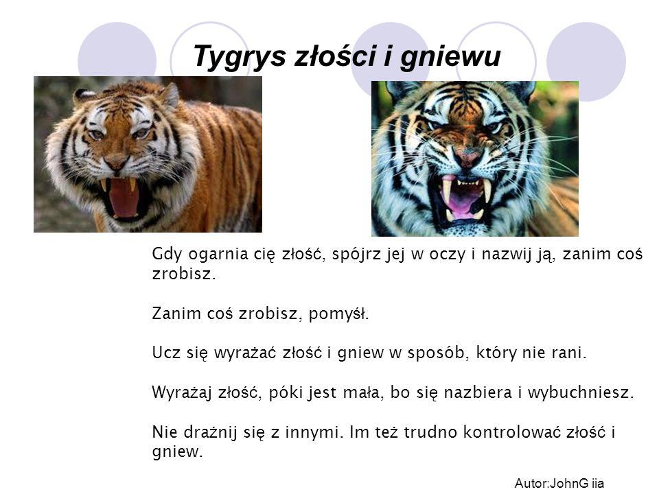 Tygrys złości i gniewu Gdy ogarnia ci ę z ł o ść, spójrz jej w oczy i nazwij j ą, zanim co ś zrobisz. Zanim co ś zrobisz, pomy śł. Ucz si ę wyra ż a ć