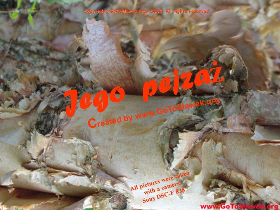 Jego pejza ż C reated by www.GoToSlawek.org Copyrights GoToSlawek.org, 2004; All rights reserved All pictures were taken with a camera Sony DSC-F 828