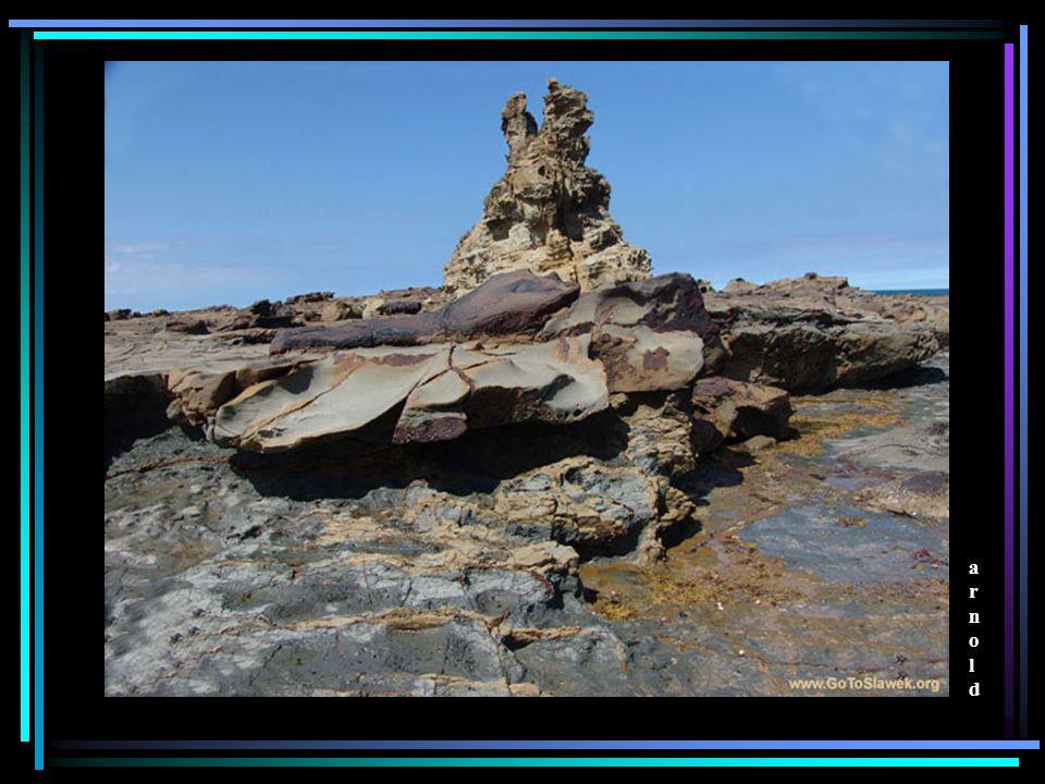 Wszystkie zdjecia zrobiono w Australii aparatem foftograficznym Sony DSC-F 828 Copyrights GoToSlawek.org; All rights reserved