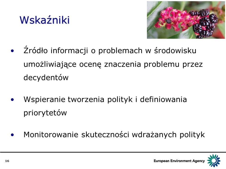 16 Wskaźniki Źródło informacji o problemach w środowisku umożliwiające ocenę znaczenia problemu przez decydentów Wspieranie tworzenia polityk i defini