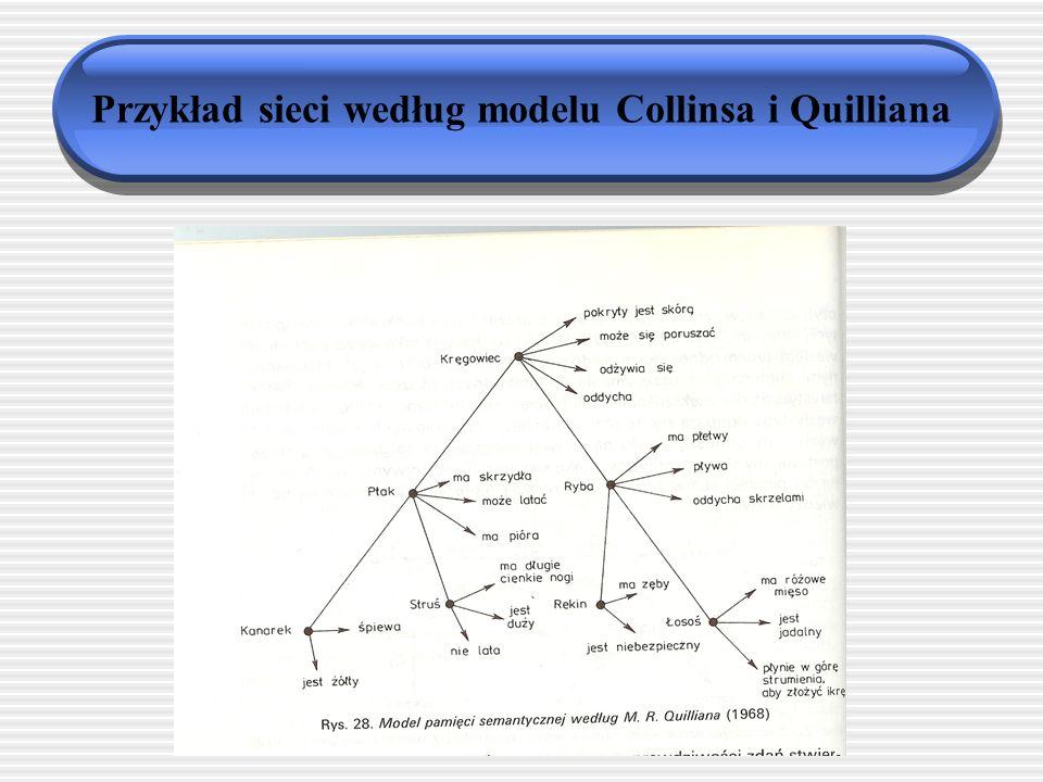Struktura pamięci semantycznej: modele sieciowe Pamięć semantyczna to sieć złożona z węzłów (pojęć) i połączeń między nimi (relacji) Relacje przynależności do klasy nadrzędnej Relacje o charakterze predykatywnym Cechy przypisane węzłom nie powtarzają się na poziomie podrzędnym Sieć hierarchiczna i zbudowana tak, by zapewnić ekonomię poznawczą