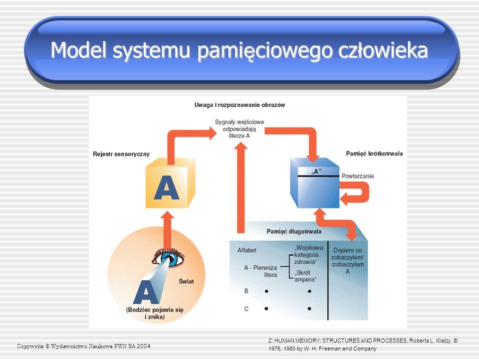 Model tradycyjny (Shiffrin i Atkinson, 1968) WIELOMAGAZYNOWY MODEL PAMIĘCI Pamięć sensoryczna ikoniczna /echoiczna Pamięć krótkotrwała (STM) (pamięć operacyjna) Pamięć długotrwała (LTM) semantyczna / epizodyczna