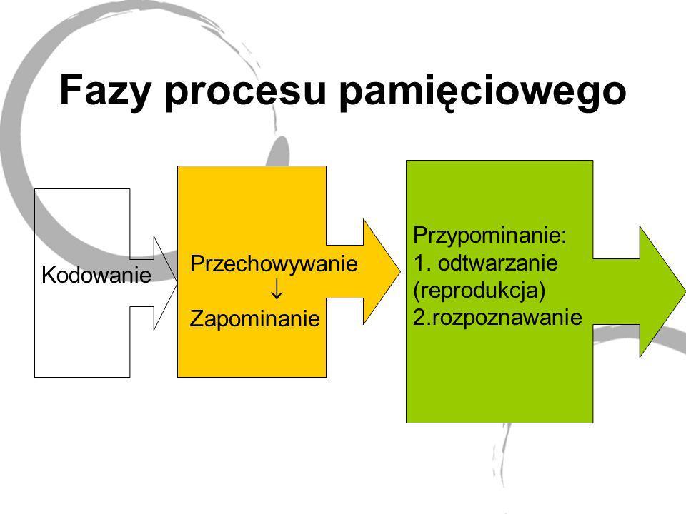 Fazy procesu pamięciowego Kodowanie Przechowywanie Zapominanie Przypominanie: 1. odtwarzanie (reprodukcja) 2.rozpoznawanie