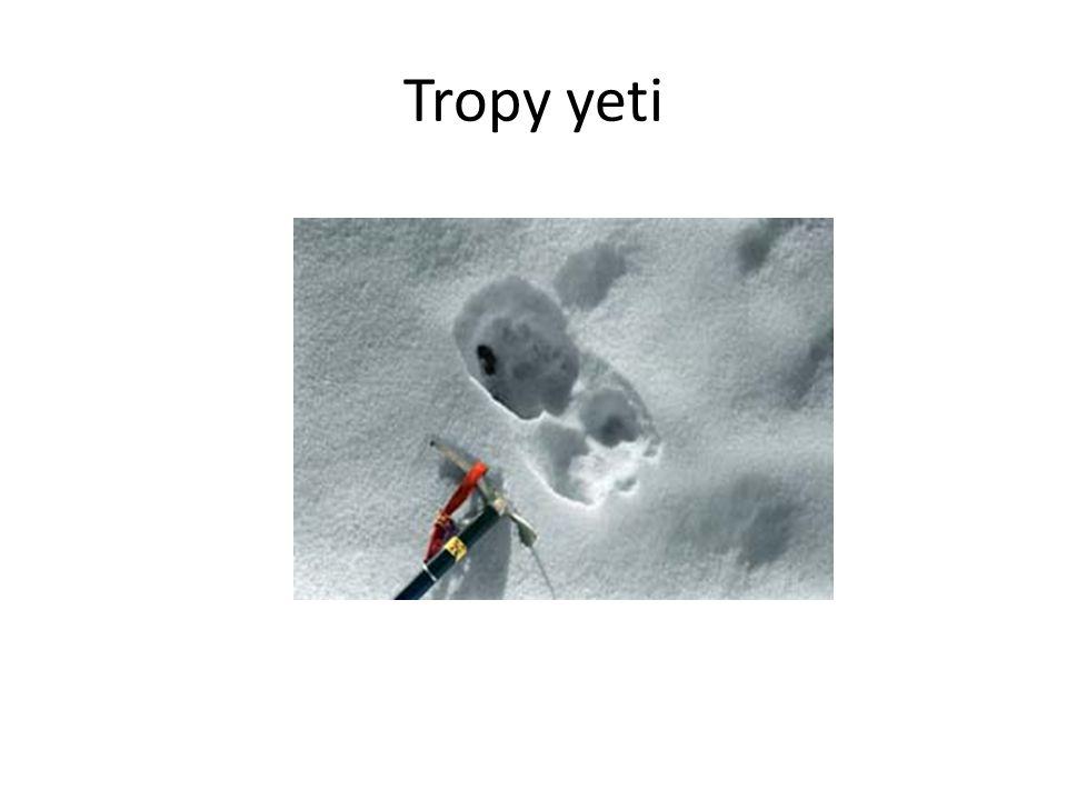 Tropy yeti