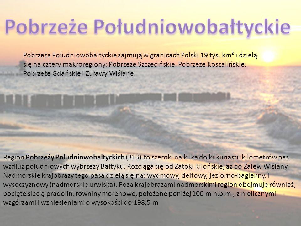 Region Pobrzeży Południowobałtyckich (313) to szeroki na kilka do kilkunastu kilometrów pas wzdłuż południowych wybrzeży Bałtyku. Rozciąga się od Zato