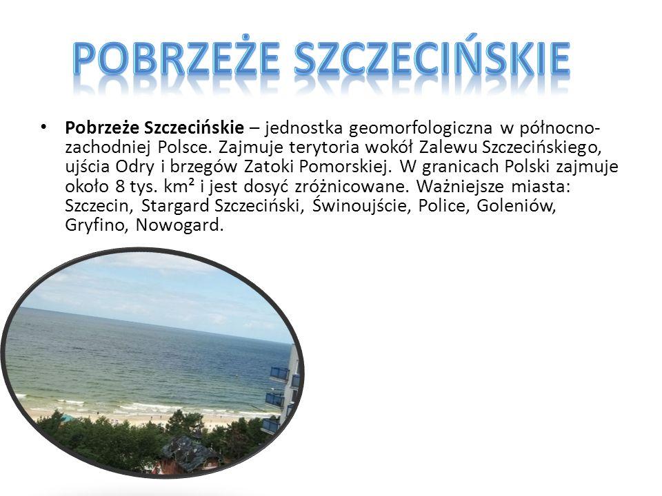 Pobrzeże Szczecińskie – jednostka geomorfologiczna w północno- zachodniej Polsce. Zajmuje terytoria wokół Zalewu Szczecińskiego, ujścia Odry i brzegów