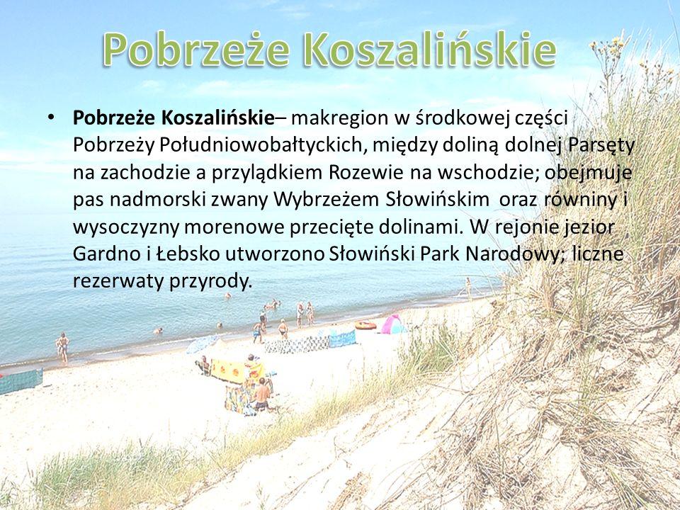 Pobrzeże Koszalińskie– makregion w środkowej części Pobrzeży Południowobałtyckich, między doliną dolnej Parsęty na zachodzie a przylądkiem Rozewie na