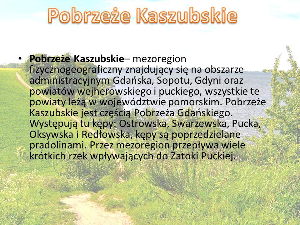 Pobrzeże Kaszubskie– mezoregion fizycznogeograficzny znajdujący się na obszarze administracyjnym Gdańska, Sopotu, Gdyni oraz powiatów wejherowskiego i