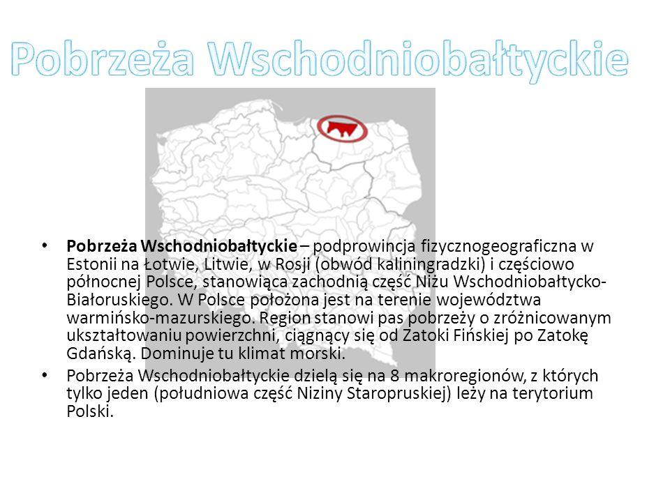 Pobrzeża Wschodniobałtyckie – podprowincja fizycznogeograficzna w Estonii na Łotwie, Litwie, w Rosji (obwód kaliningradzki) i częściowo północnej Pols