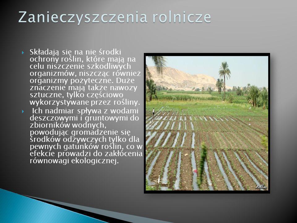 Składają się na nie środki ochrony roślin, które mają na celu niszczenie szkodliwych organizmów, niszcząc również organizmy pożyteczne. Duże znaczenie