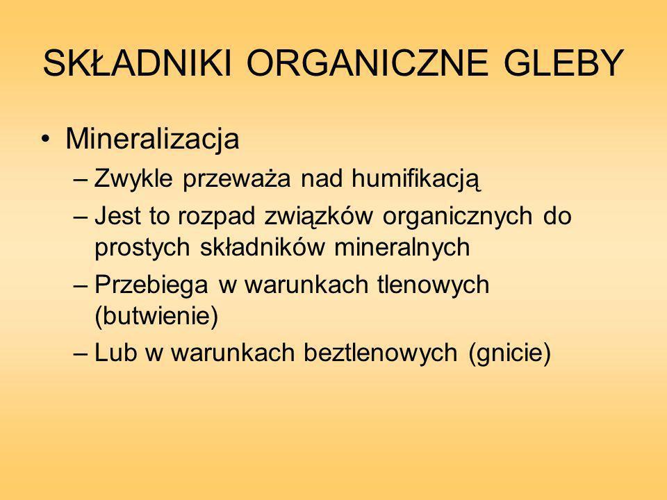 SKŁADNIKI ORGANICZNE GLEBY Mineralizacja –Zwykle przeważa nad humifikacją –Jest to rozpad związków organicznych do prostych składników mineralnych –Przebiega w warunkach tlenowych (butwienie) –Lub w warunkach beztlenowych (gnicie)