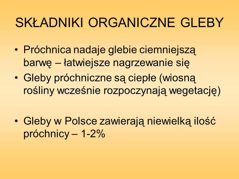 SKŁADNIKI ORGANICZNE GLEBY Próchnica nadaje glebie ciemniejszą barwę – łatwiejsze nagrzewanie się Gleby próchniczne są ciepłe (wiosną rośliny wcześnie rozpoczynają wegetację) Gleby w Polsce zawierają niewielką ilość próchnicy – 1-2%