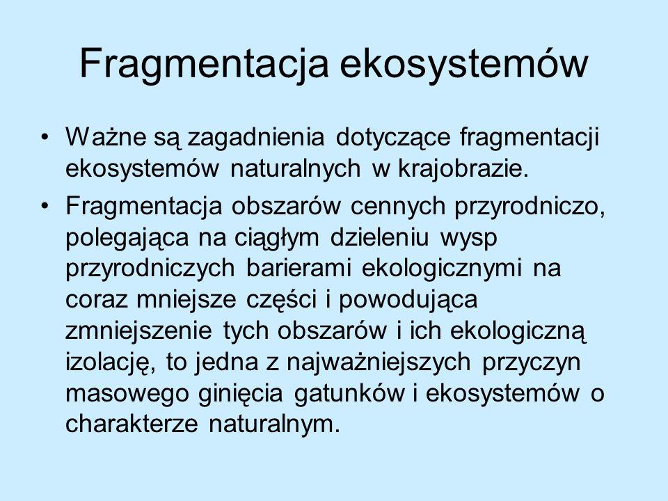Fragmentacja ekosystemów Ważne są zagadnienia dotyczące fragmentacji ekosystemów naturalnych w krajobrazie. Fragmentacja obszarów cennych przyrodniczo
