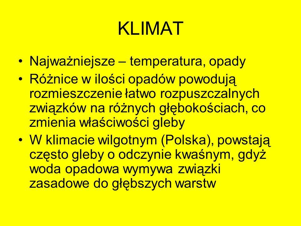 KLIMAT Najważniejsze – temperatura, opady Różnice w ilości opadów powodują rozmieszczenie łatwo rozpuszczalnych związków na różnych głębokościach, co