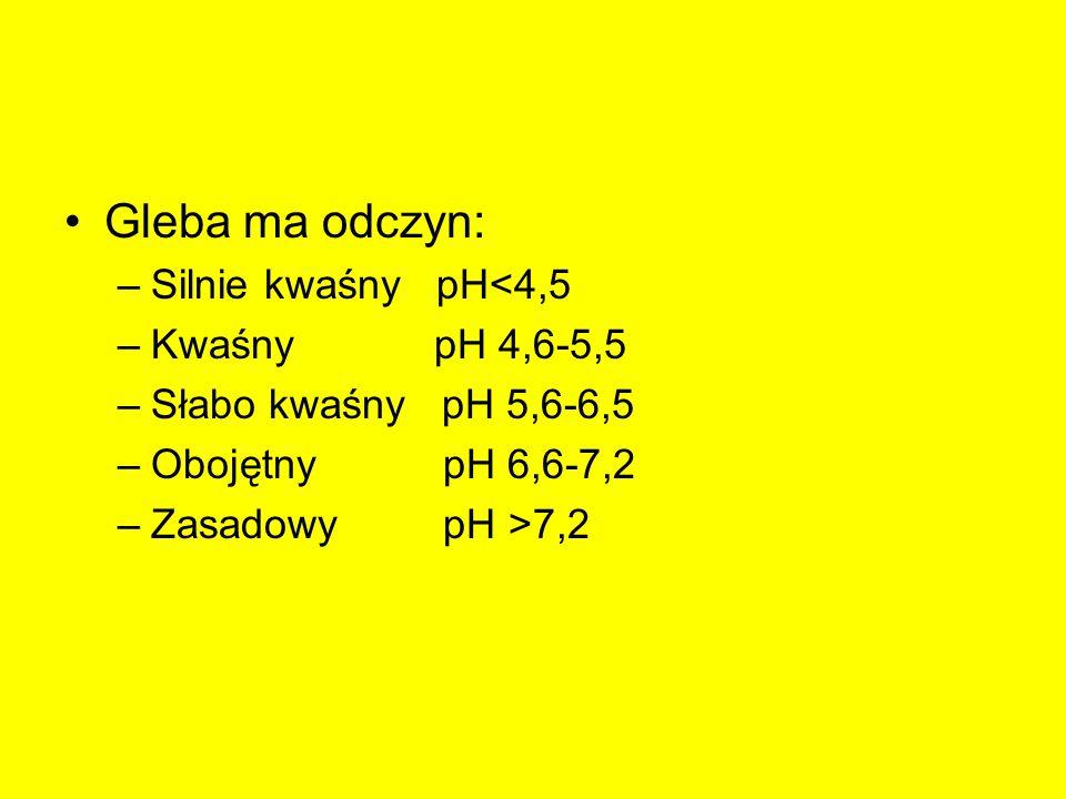 Gleba ma odczyn: –Silnie kwaśny pH<4,5 –Kwaśny pH 4,6-5,5 –Słabo kwaśny pH 5,6-6,5 –Obojętny pH 6,6-7,2 –Zasadowy pH >7,2