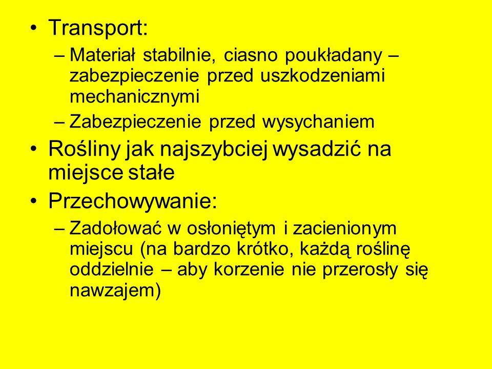 Transport: –Materiał stabilnie, ciasno poukładany – zabezpieczenie przed uszkodzeniami mechanicznymi –Zabezpieczenie przed wysychaniem Rośliny jak naj