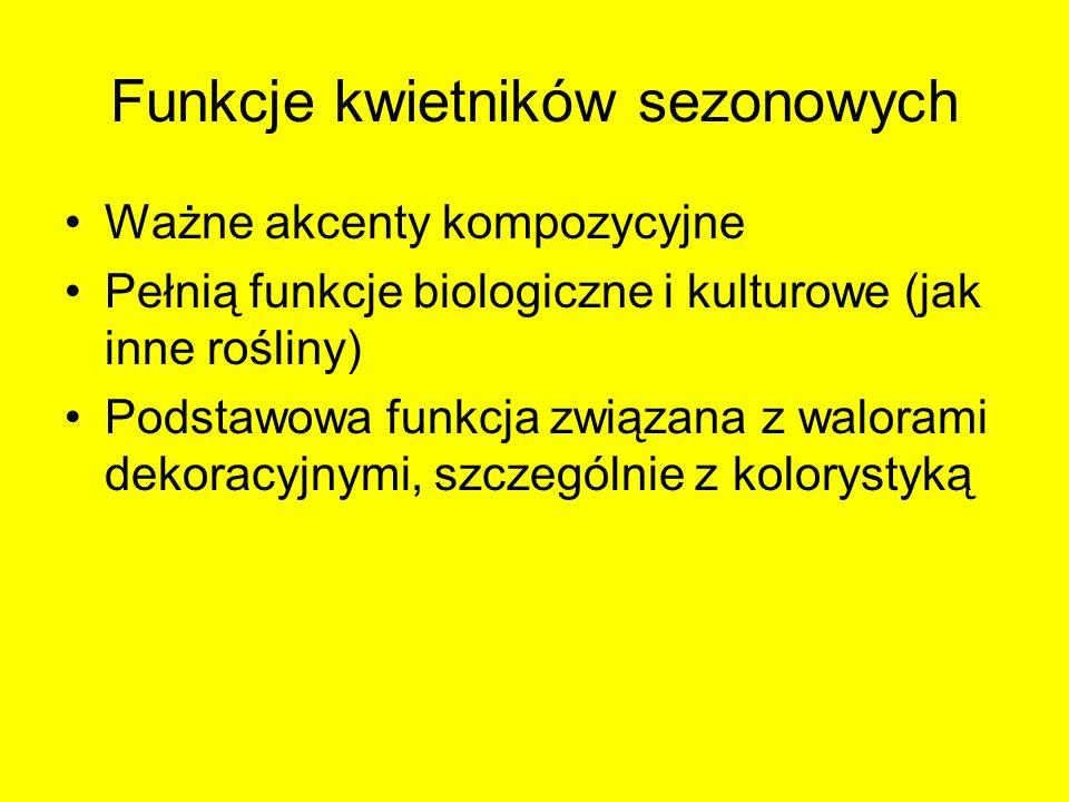 Funkcje kwietników sezonowych Ważne akcenty kompozycyjne Pełnią funkcje biologiczne i kulturowe (jak inne rośliny) Podstawowa funkcja związana z walor