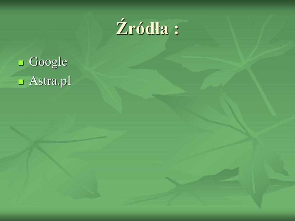 Źródła : Google Google Astra.pl Astra.pl