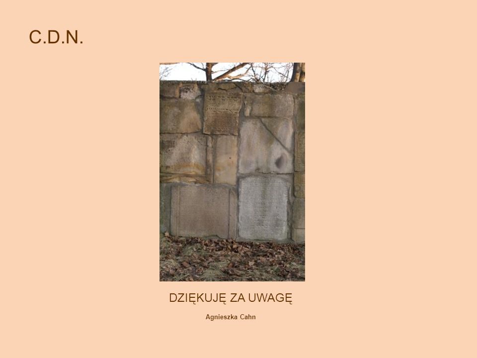 C.D.N. DZIĘKUJĘ ZA UWAGĘ Agnieszka Cahn