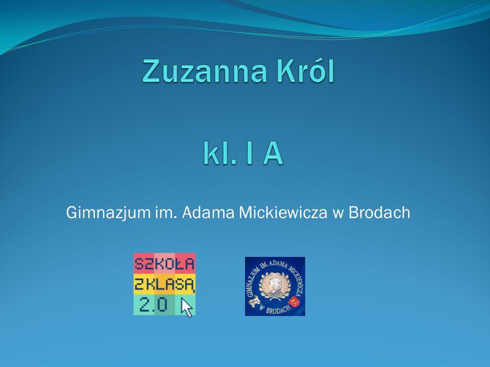 PolskieRadio.pl Audycja pt. Barwa, farba, kolor- opowiada prof. Marian Jurkowski
