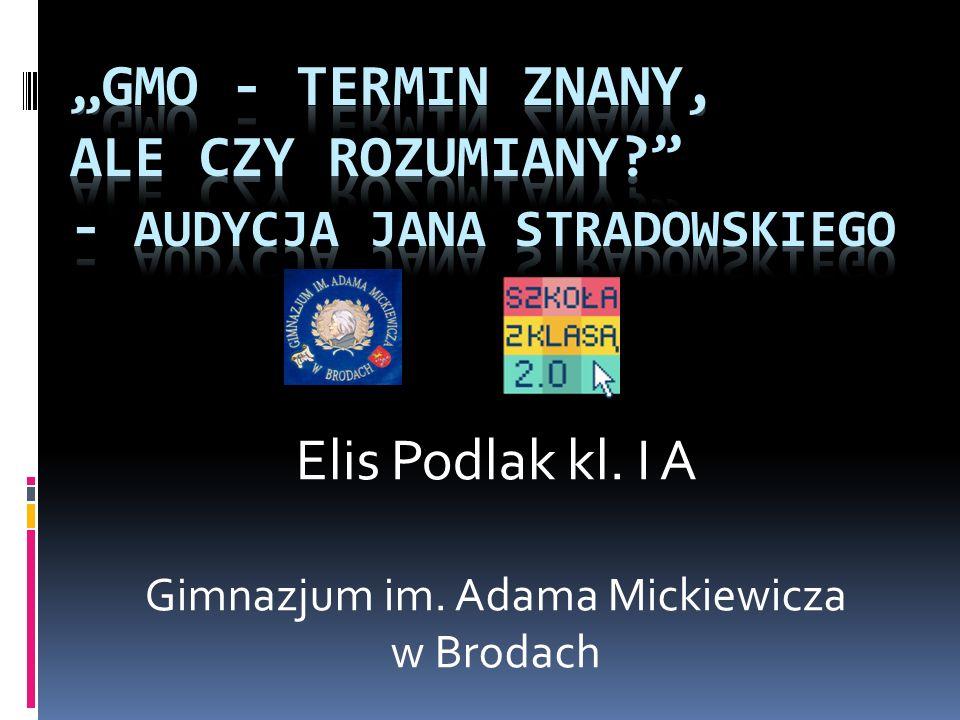 Elis Podlak kl. I A Gimnazjum im. Adama Mickiewicza w Brodach