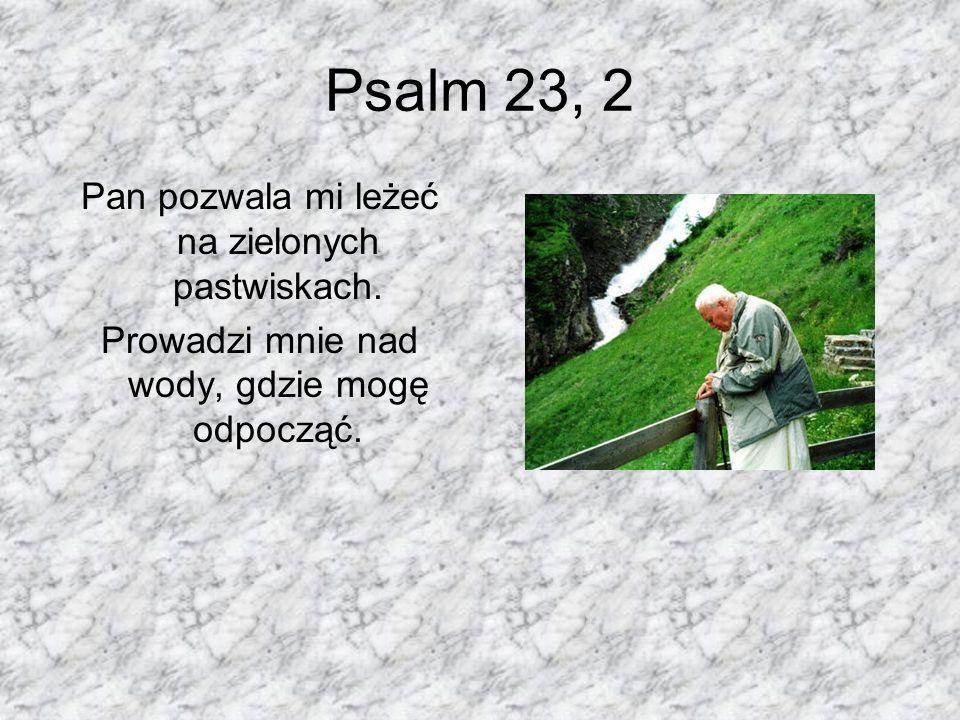 Psalm 23, 2 Pan pozwala mi leżeć na zielonych pastwiskach. Prowadzi mnie nad wody, gdzie mogę odpocząć.
