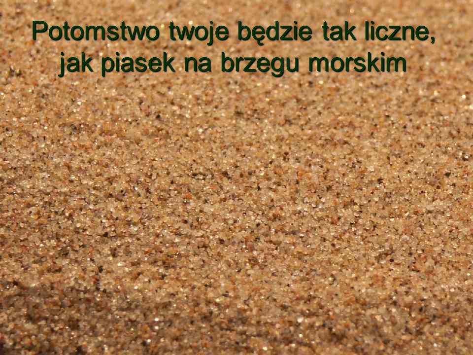 Potomstwo twoje będzie tak liczne, jak piasek na brzegu morskim