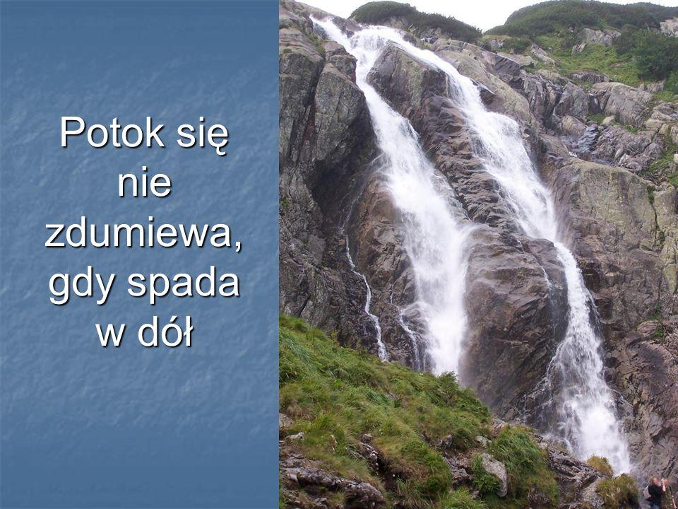 Potok się nie zdumiewa, gdy spada w dół