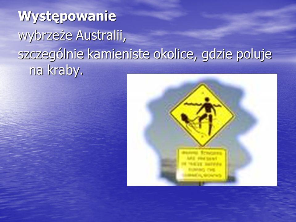 Występowanie wybrzeże Australii, szczególnie kamieniste okolice, gdzie poluje na kraby.
