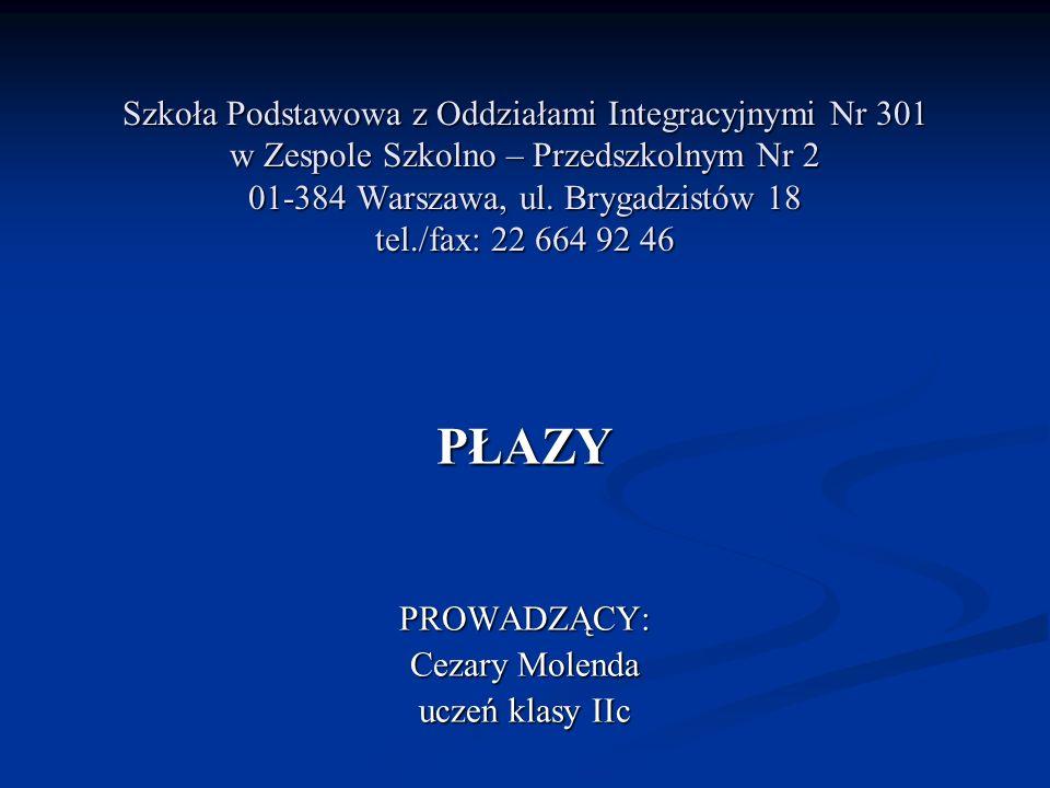 Szkoła Podstawowa z Oddziałami Integracyjnymi Nr 301 w Zespole Szkolno – Przedszkolnym Nr 2 01-384 Warszawa, ul. Brygadzistów 18 tel./fax: 22 664 92 4