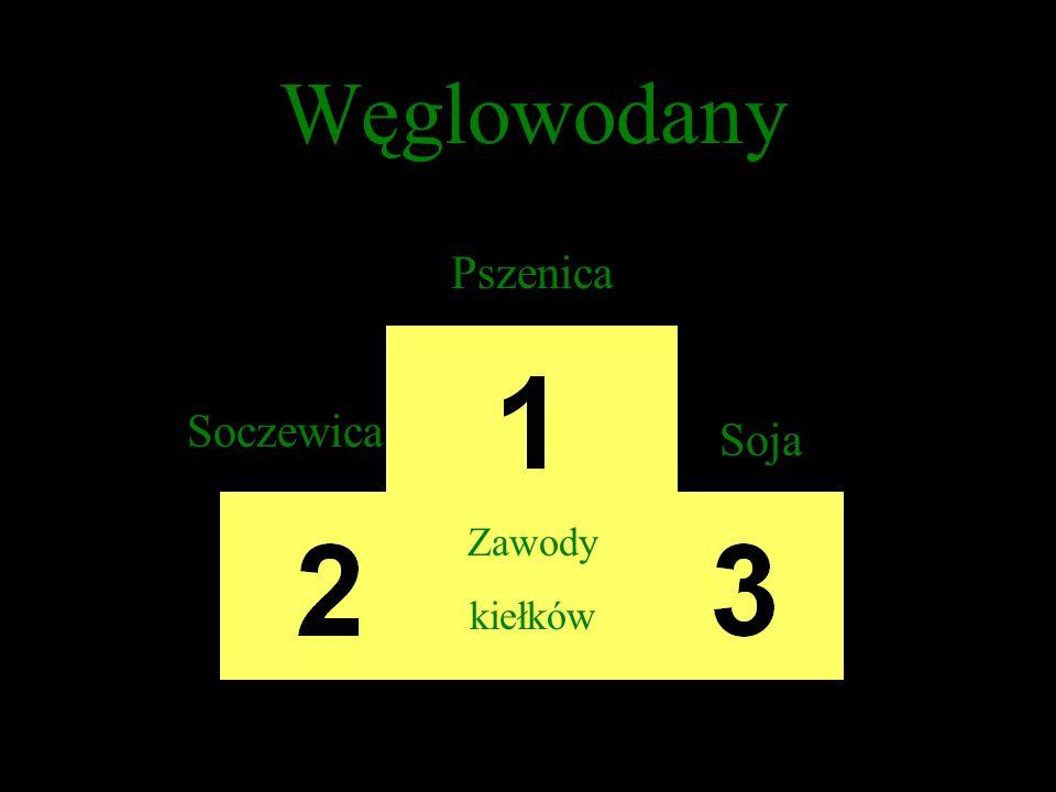 Białko Soja Soczewica Pszenica Zawody kiełków