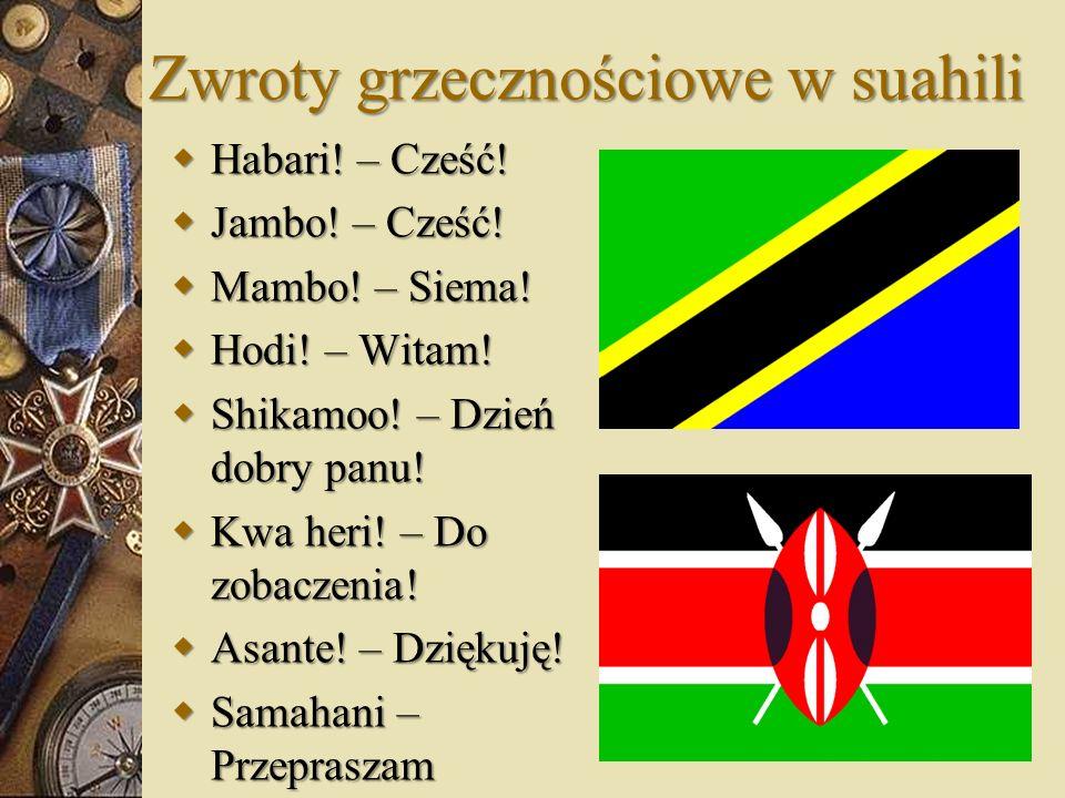 Zwroty grzecznościowe w suahili Habari! – Cześć! Habari! – Cześć! Jambo! – Cześć! Jambo! – Cześć! Mambo! – Siema! Mambo! – Siema! Hodi! – Witam! Hodi!