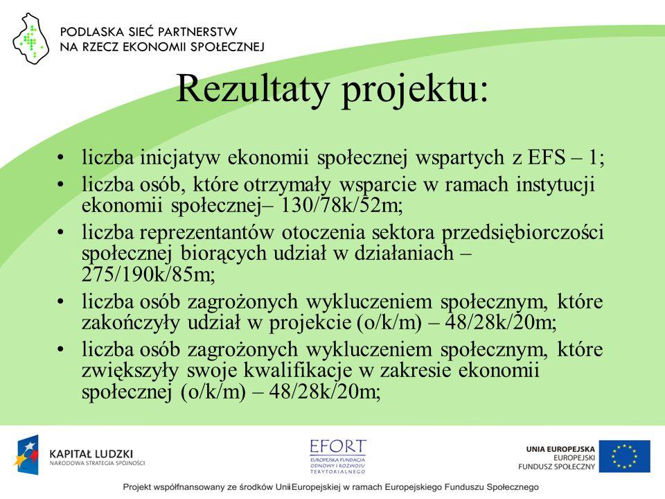 Rezultaty projektu: liczba inicjatyw ekonomii społecznej wspartych z EFS – 1; liczba osób, które otrzymały wsparcie w ramach instytucji ekonomii społe