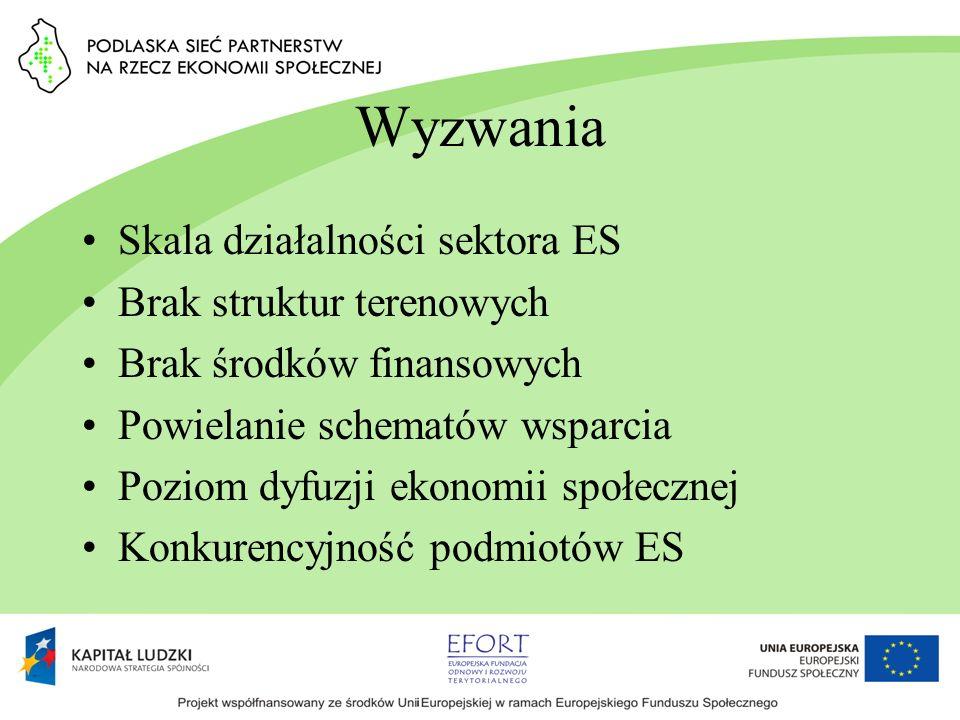 Wyzwania Skala działalności sektora ES Brak struktur terenowych Brak środków finansowych Powielanie schematów wsparcia Poziom dyfuzji ekonomii społecz