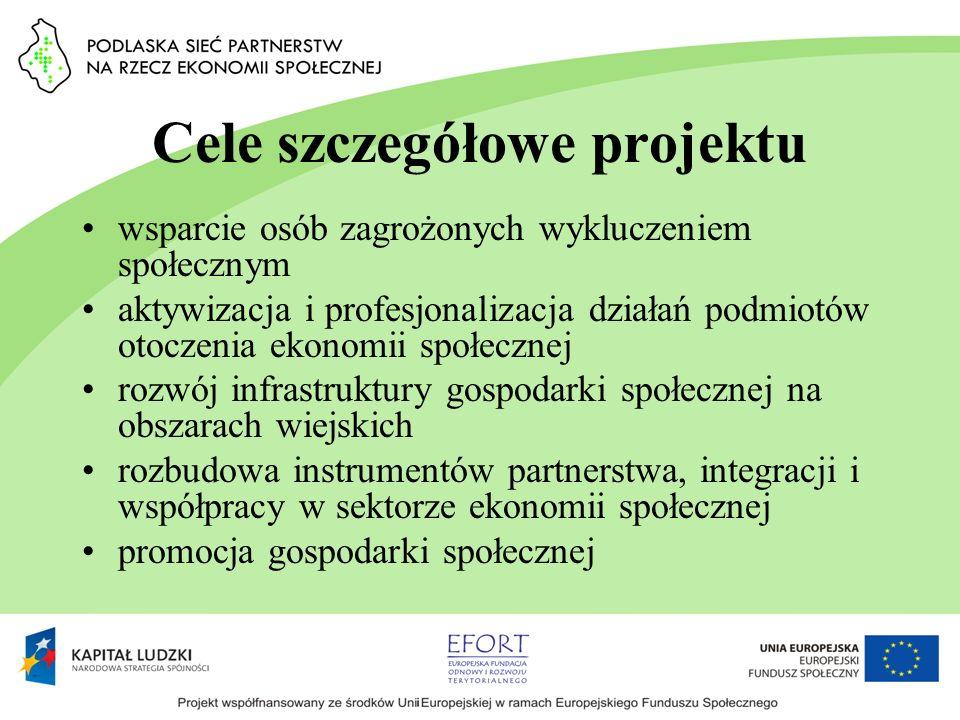 Cele szczegółowe projektu wsparcie osób zagrożonych wykluczeniem społecznym aktywizacja i profesjonalizacja działań podmiotów otoczenia ekonomii społe