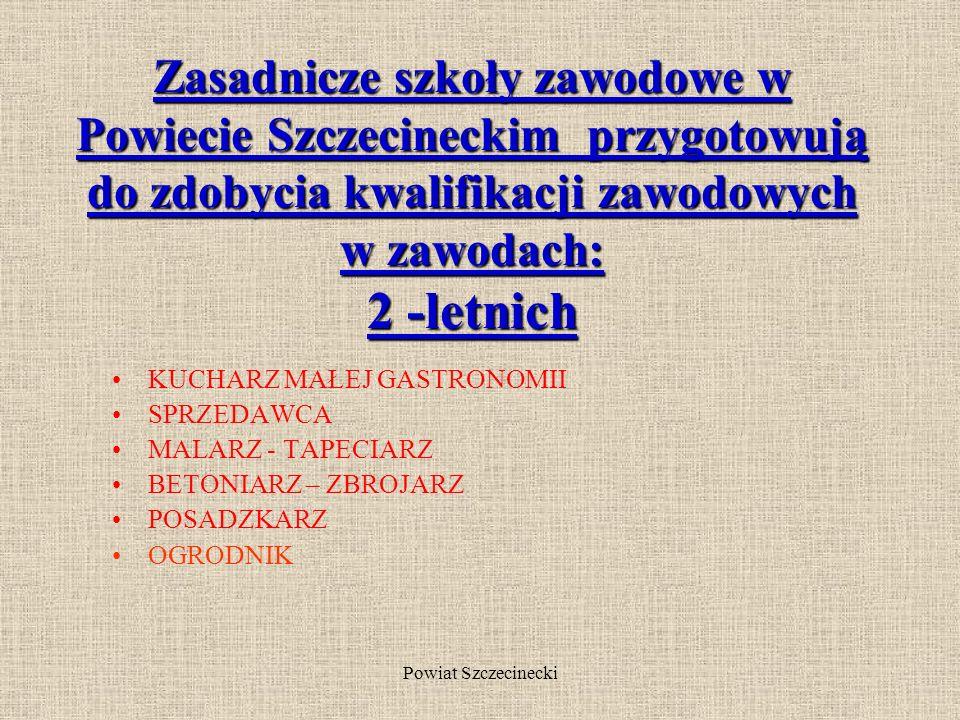 Powiat Szczecinecki Zasadnicza szkoła zawodowa Głównym celem szkoły zawodowej jest umożliwienie absolwentowi uzyskania kwalifikacji w wyuczonym zawodzie.