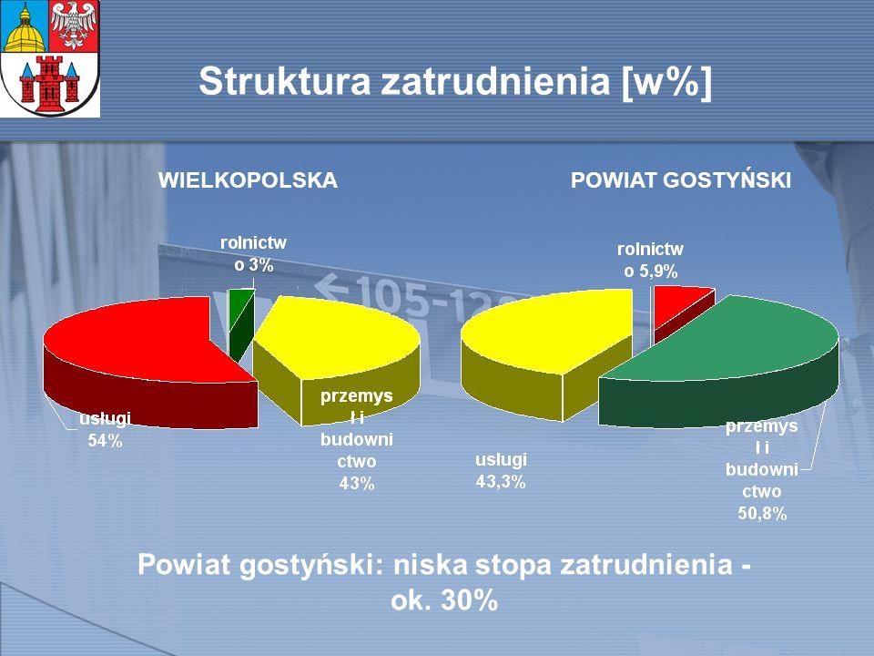 Struktura zatrudnienia [w%] WIELKOPOLSKAPOWIAT GOSTYŃSKI Powiat gostyński: niska stopa zatrudnienia - ok.