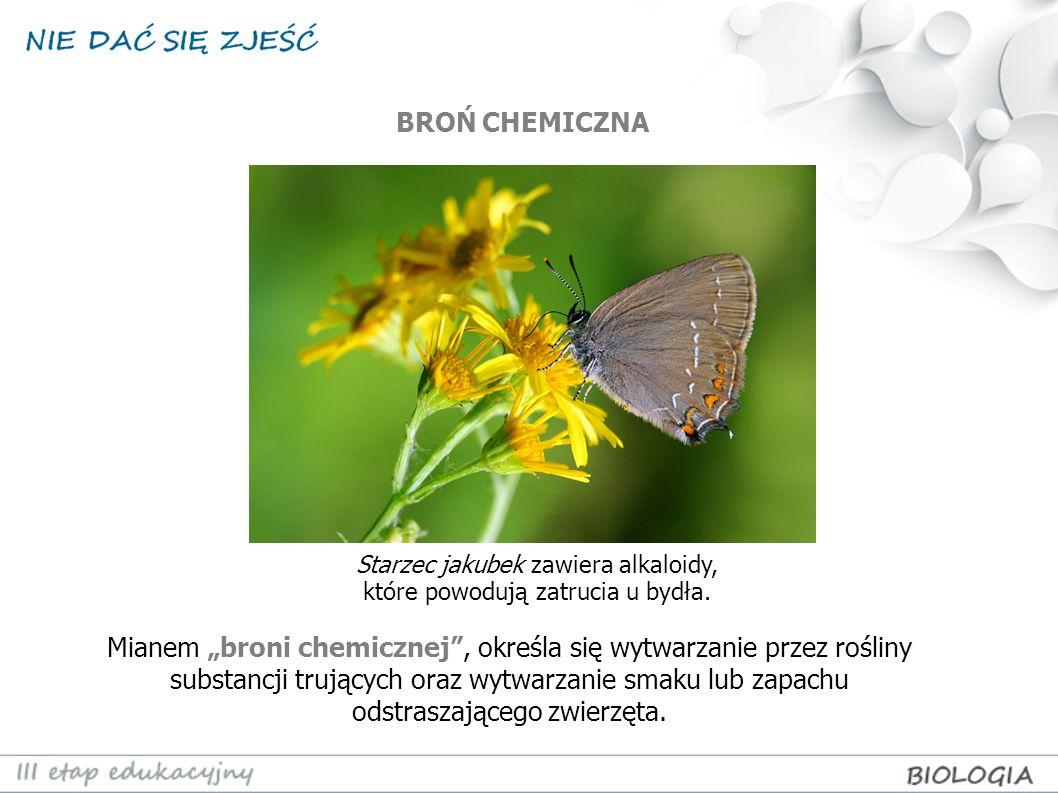 Mianem broni chemicznej, określa się wytwarzanie przez rośliny substancji trujących oraz wytwarzanie smaku lub zapachu odstraszającego zwierzęta. Star