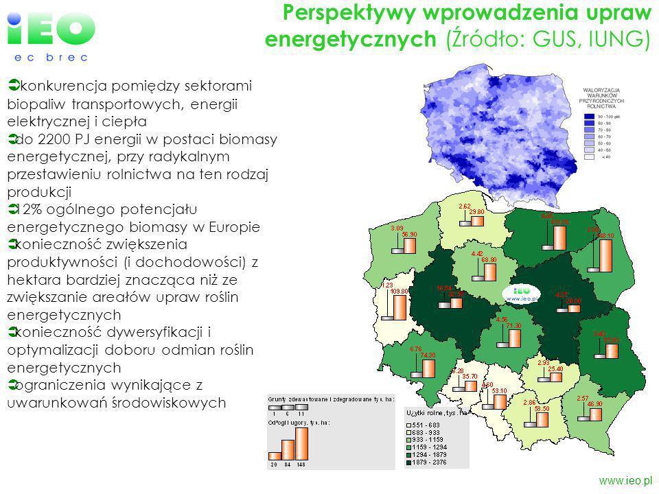 www.ieo.pl Perspektywy wprowadzenia upraw energetycznych (Źródło: GUS, IUNG) konkurencja pomiędzy sektorami biopaliw transportowych, energii elektrycznej i ciepła do 2200 PJ energii w postaci biomasy energetycznej, przy radykalnym przestawieniu rolnictwa na ten rodzaj produkcji 12% ogólnego potencjału energetycznego biomasy w Europie konieczność zwiększenia produktywności (i dochodowości) z hektara bardziej znacząca niż ze zwiększanie areałów upraw roślin energetycznych konieczność dywersyfikacji i optymalizacji doboru odmian roślin energetycznych ograniczenia wynikające z uwarunkowań środowiskowych