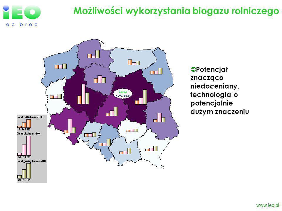 www.ieo.pl Możliwości wykorzystania biogazu rolniczego Potencjał znacząco niedoceniany, technologia o potencjalnie dużym znaczeniu