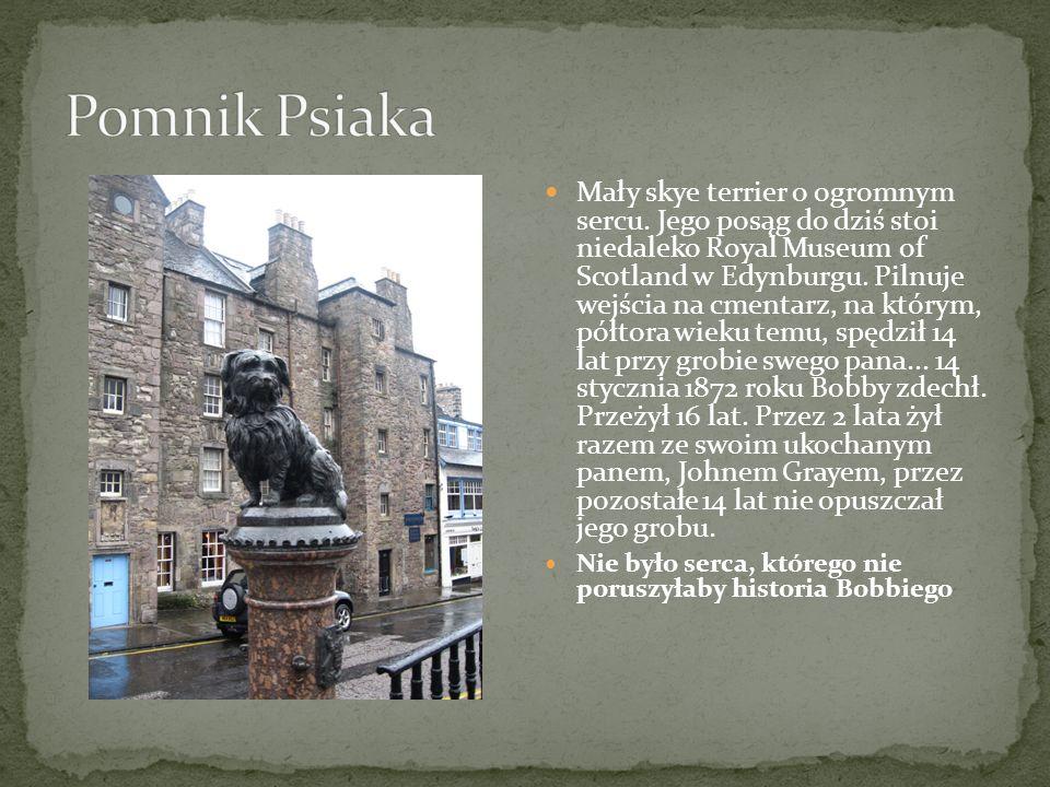 Mały skye terrier o ogromnym sercu. Jego posąg do dziś stoi niedaleko Royal Museum of Scotland w Edynburgu. Pilnuje wejścia na cmentarz, na którym, pó